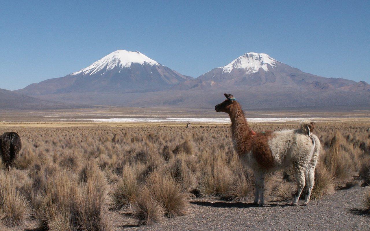 Volcan au Pérou