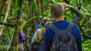 Voyageurs en l'Amazonie