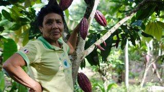 Immersion au Pérou : sur la route du Cacao et du Café