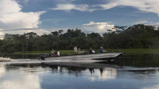Excursion en bateau à moteur Delfin III