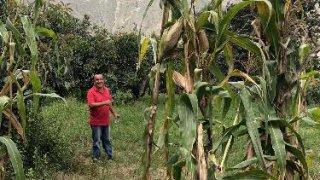 Maison habitant Huaraz Mato communautaire