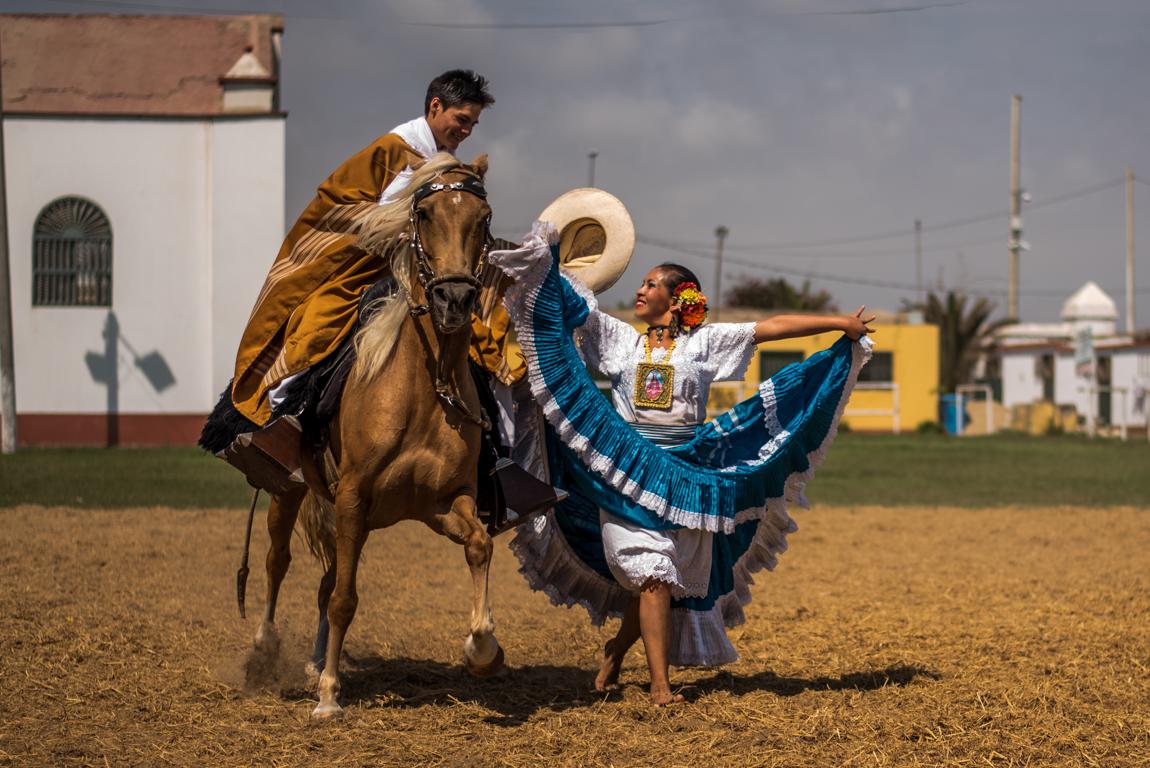 Cheval Paso au Pérou