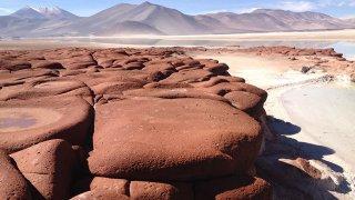 Salar d'aguas calientes / piedras rojas