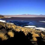 Salines, Altiplano