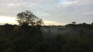 Tambopata Reserva Puerto Maldonado