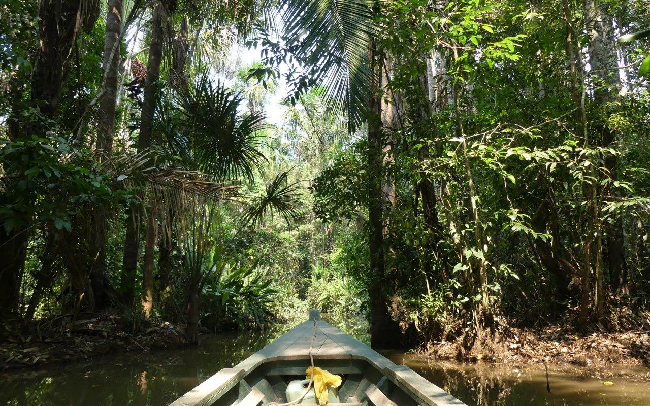 Découverte de Puerto Maldonado en Amazonie