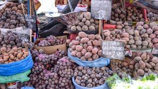 Etal du marché san camilo