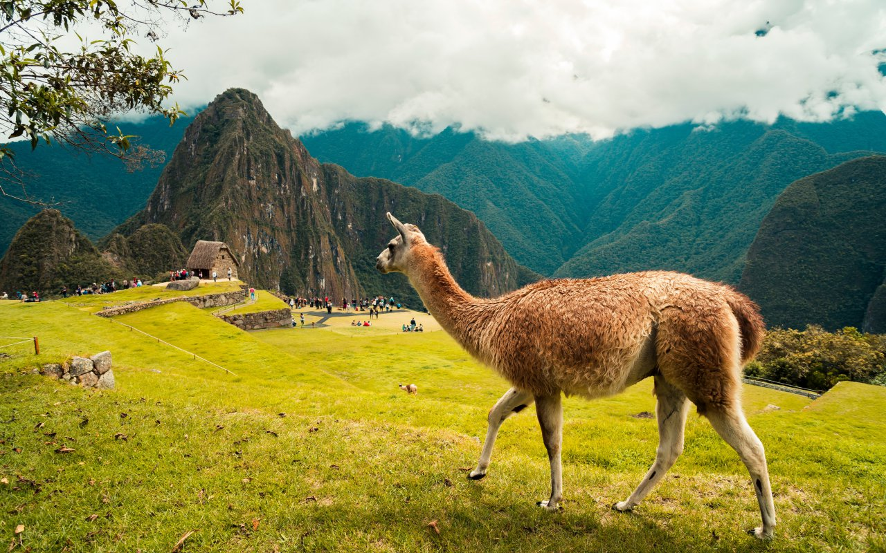 Trek du Lares au Machu Picchu